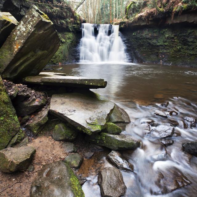 """""""Goitstock Waterfall in Goitstock Wood"""" stock image"""