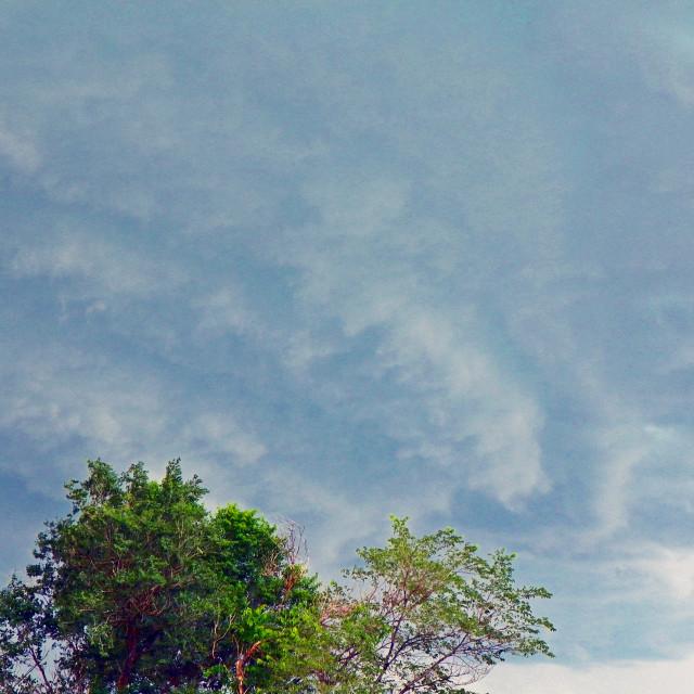 """""""Fierce Storm Casper"""" stock image"""