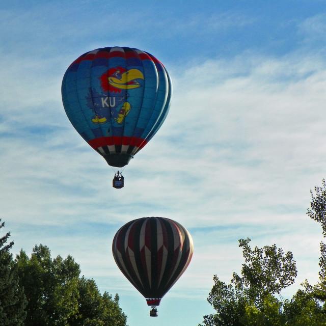 """Balloon Trees"" stock image"