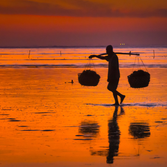 """fisher Bali"" stock image"
