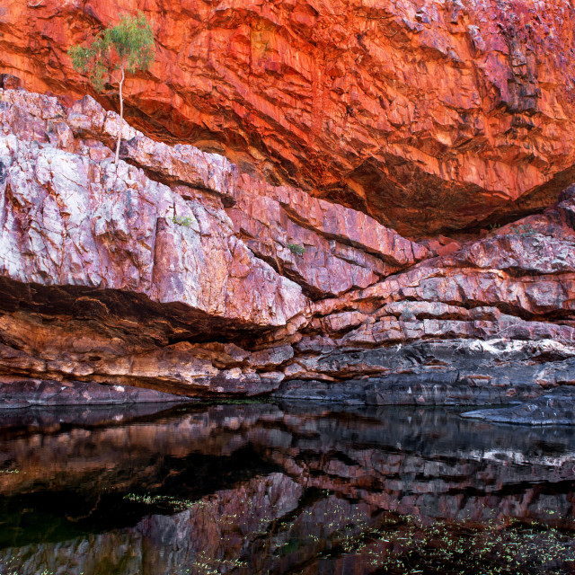 """Ormiston Gorge"" stock image"