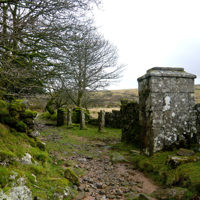 """Ancient lane and ruins, Dartmoor"" stock image"