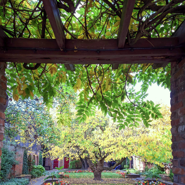 """""""Garden bliss"""" stock image"""
