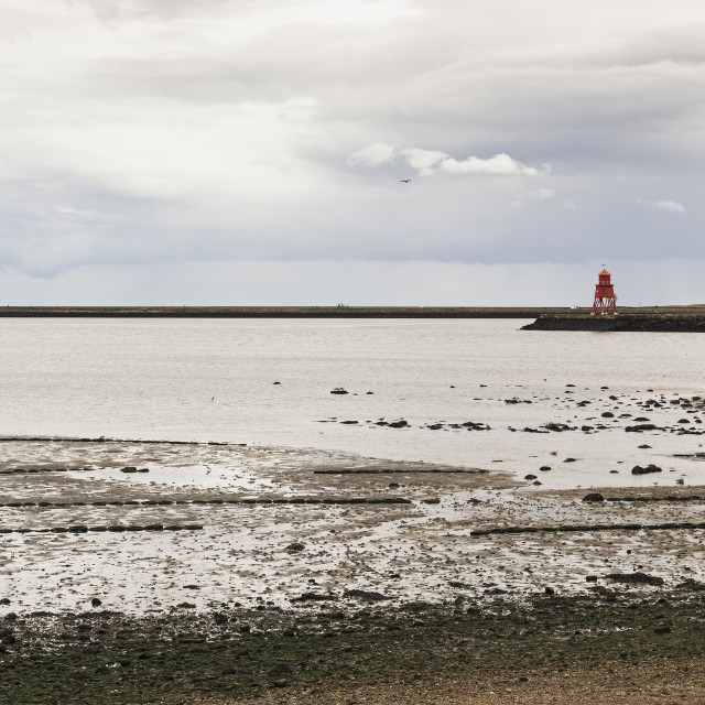"""""""North Shields at low tide"""" stock image"""