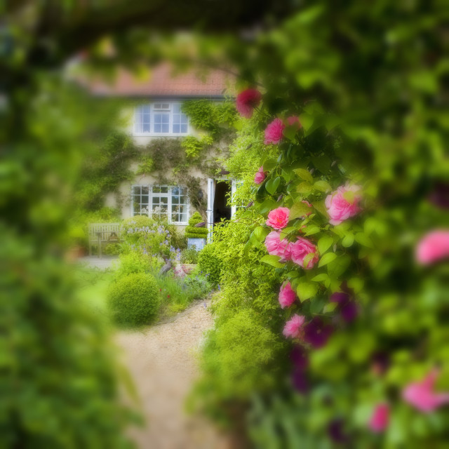 """Cottage Garden"" stock image"