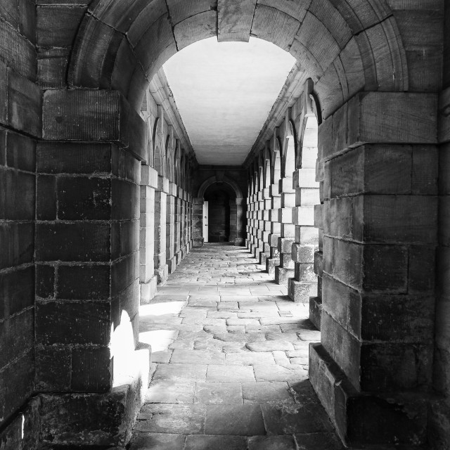 """""""Stone arches in black and white"""" stock image"""