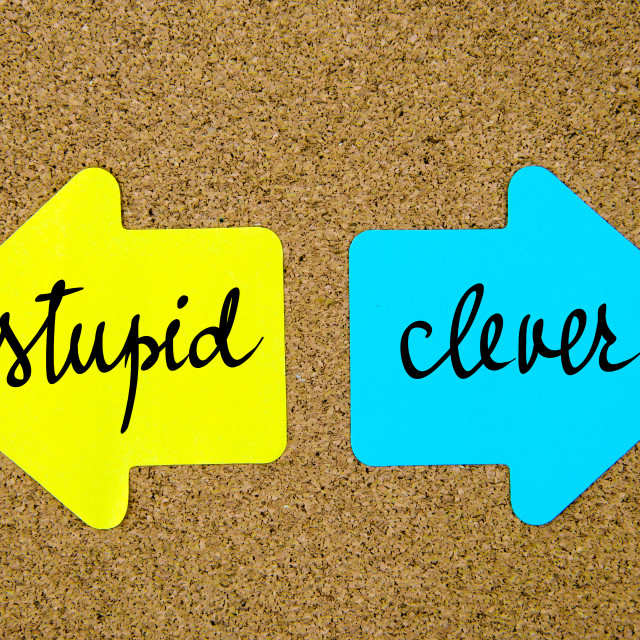 """""""Message Stupid versus Clever"""" stock image"""