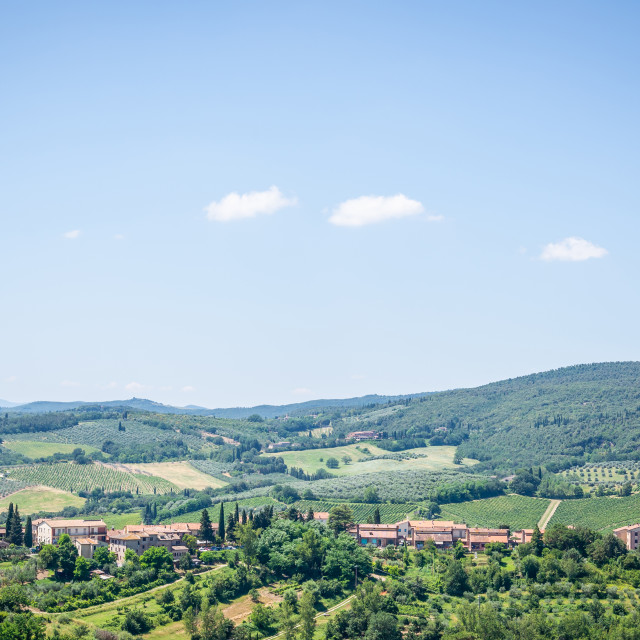 """""""View to country near the town in Tuscany with lot of trees and buildings"""" stock image"""