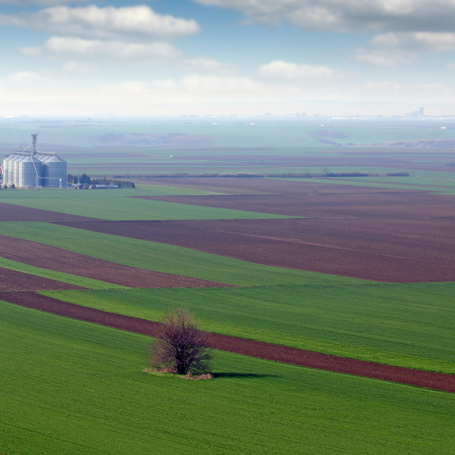 """""""plowed and green wheat fields and grain tank farmland landscape"""" stock image"""