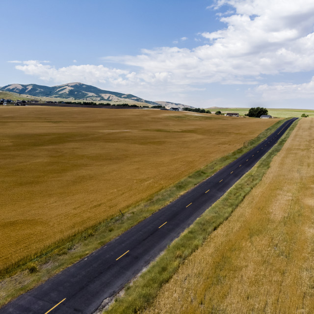 """""""A straight road through the countryside with golden fields of farmland on..."""" stock image"""