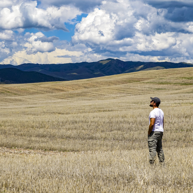 """""""Standing in a vast farm field looking towards the mountains; Utah, United..."""" stock image"""