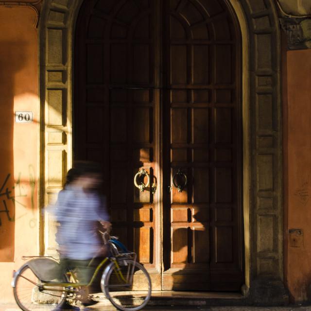 """Bologna Door"" stock image"