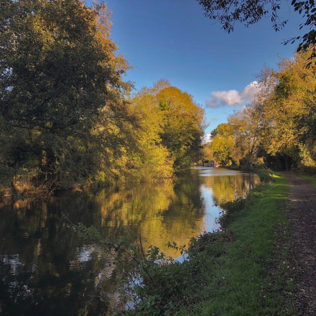 """""""Autumn on the canal"""" stock image"""