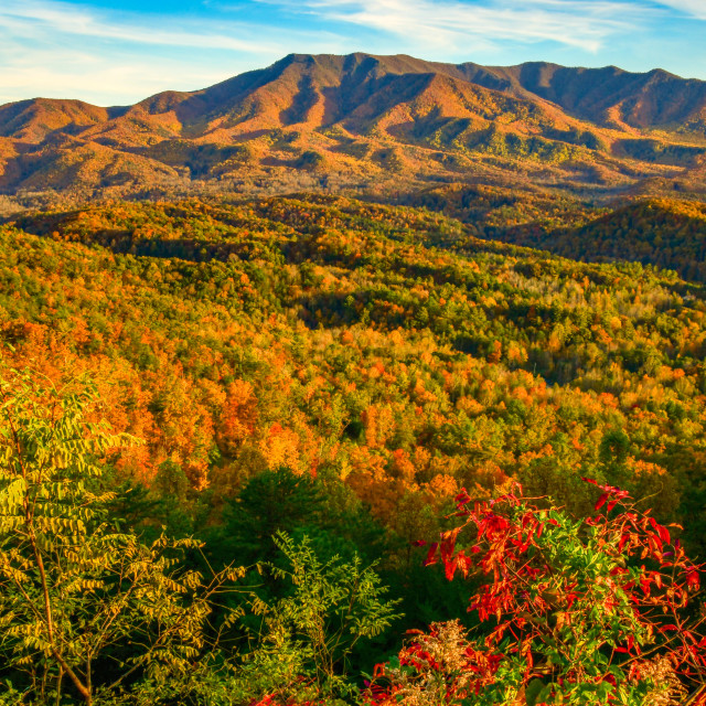 """""""Autumn in the Smoky Mountains of East Tennesse"""" stock image"""