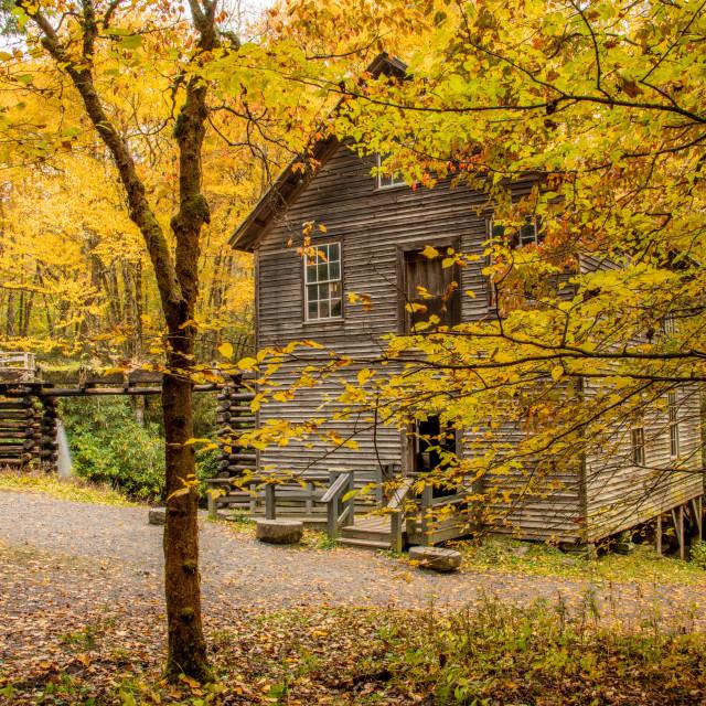 """""""Mingus Mill Through Autumn Foliage"""" stock image"""