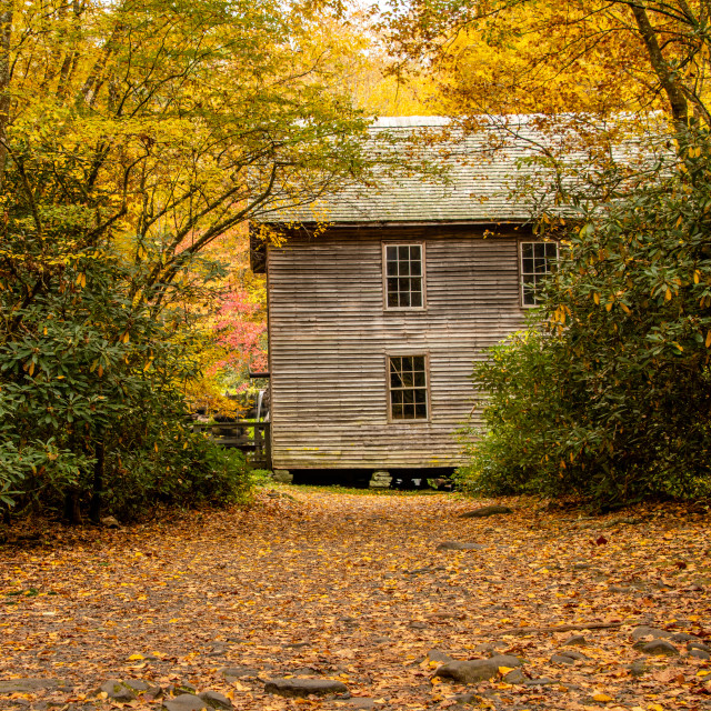"""Mingus Mill in Autumn"" stock image"