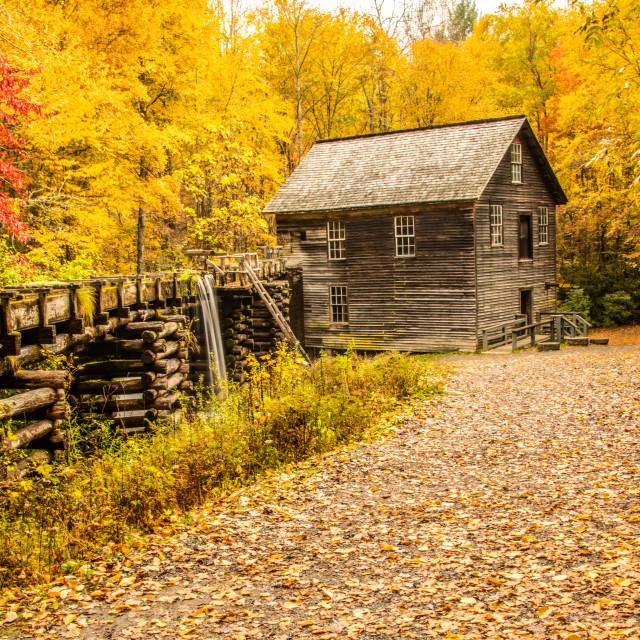 """""""Mingus Mill Autumn"""" stock image"""