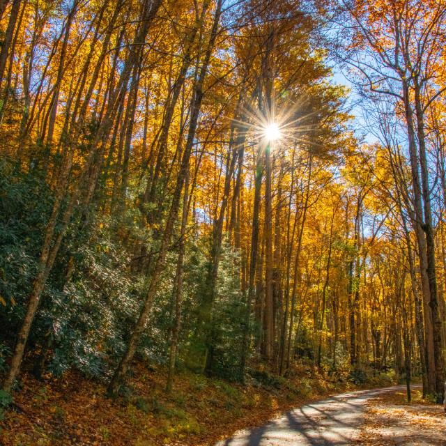 """Ray of sun against Smoky Mountain Autumn Sky"" stock image"
