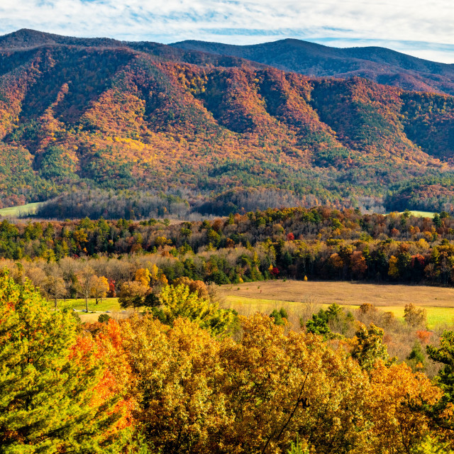 """View Across Cades Cove"" stock image"