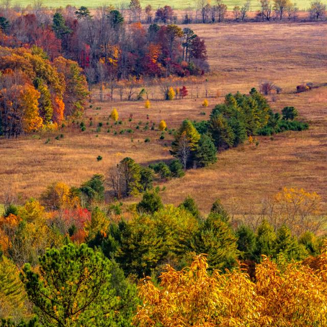 """Autumn in Cades Cove"" stock image"