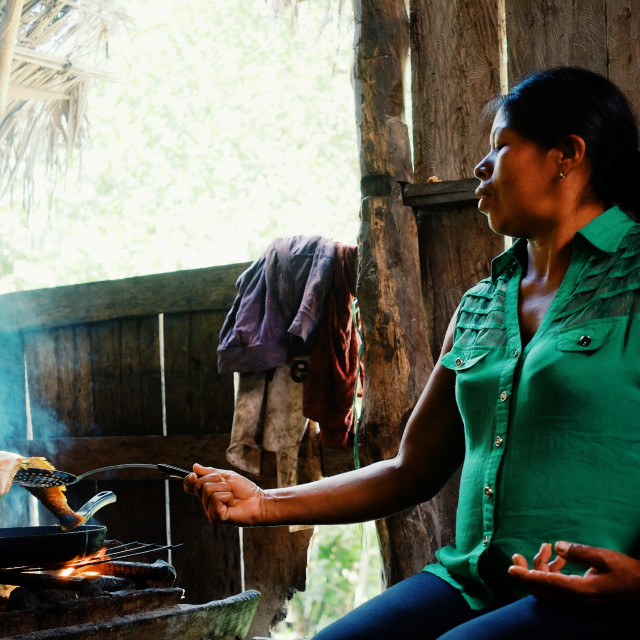 """""""Macedonia, Amazonia / Colombia - MAR 10 2016: local ticuna tribal member woman cooking fish at their jungle rainforest home"""" stock image"""