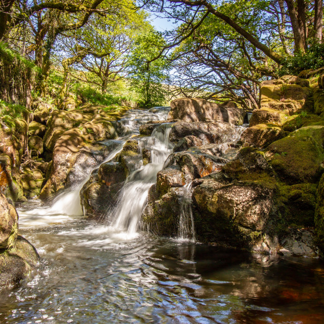 """River Avon, Dartmoor"" stock image"