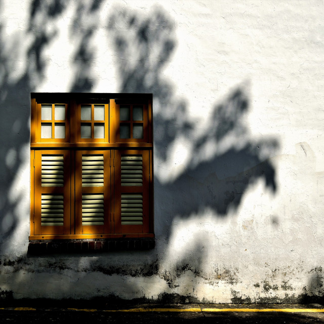 """""""Shophouse shutters and shadow"""" stock image"""
