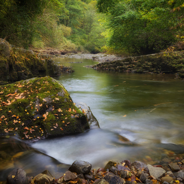 """Autumn river in South Wales"" stock image"