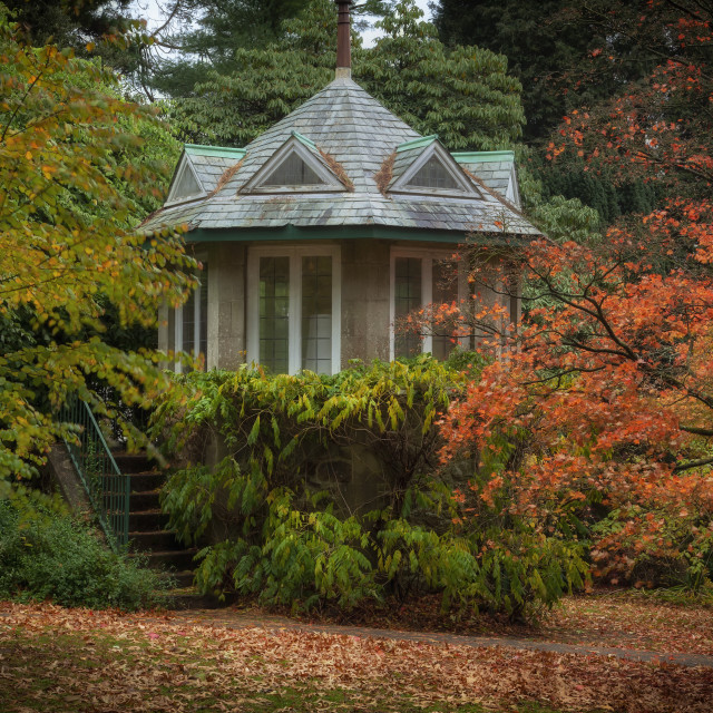 """Autumn at Clyne Gardens"" stock image"