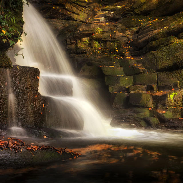 """The falls at Neath Abbey"" stock image"