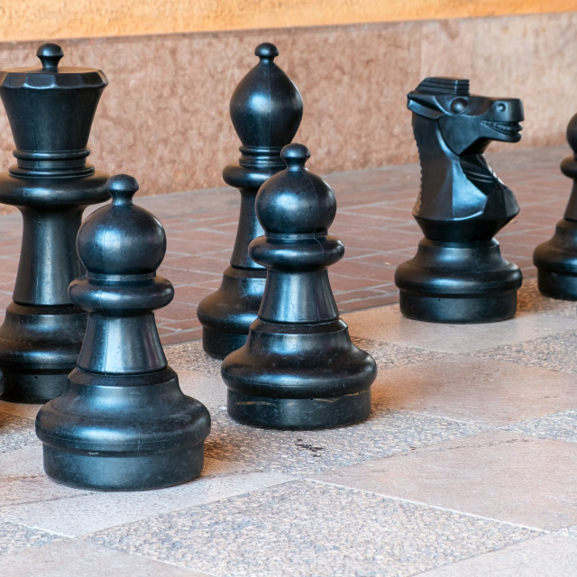 """""""Giant chess pieces. Color image"""" stock image"""
