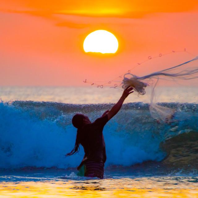 """fisherman throws his Net"" stock image"