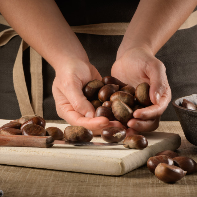 """""""Woman cuts chestnuts"""" stock image"""