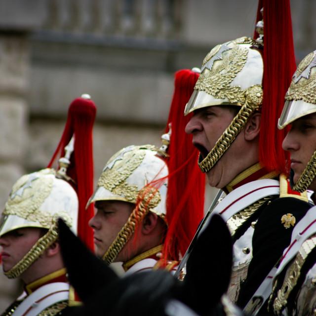 """Yawn - Horse Guards parade"" stock image"