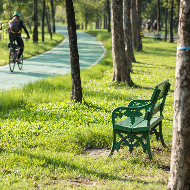 """chair in park near run and bike lanes"" stock image"