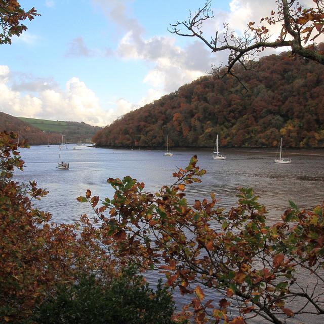 """River Dart in Autumn"" stock image"