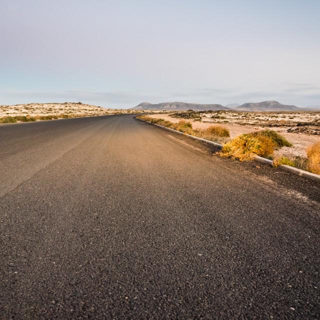 """Desertic road in Fuerteventura at sunset, Spain"" stock image"