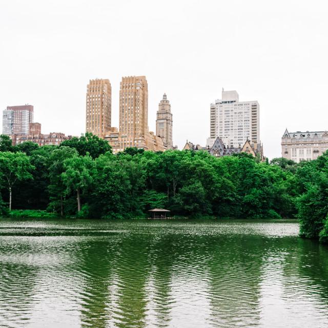"""The Lake in Central Park in New York"" stock image"