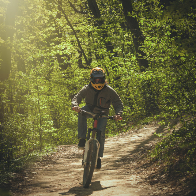 """man ride mountain bike through forest"" stock image"