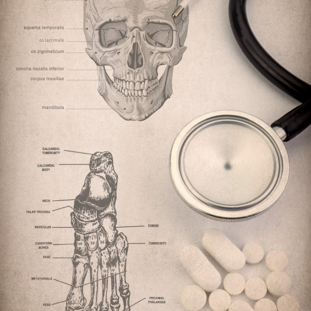 """""""System human skeleton detail of head and foot, Pills, thermometer and..."""" stock image"""