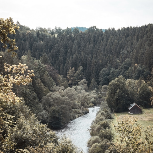 """""""River in small valley with many trees on both sides"""" stock image"""