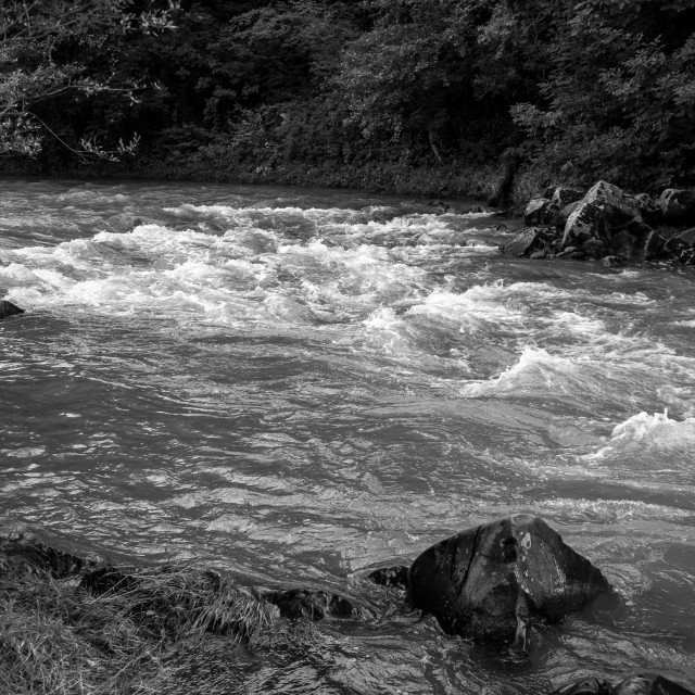 """""""River flows, black and white image"""" stock image"""