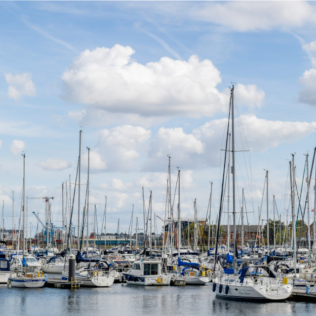 """""""Chatham Maritime Marina"""" stock image"""