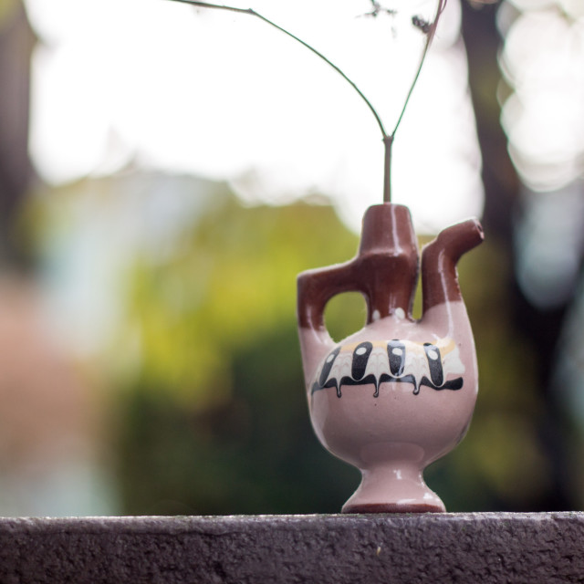 """fennel stalk in decorative jar"" stock image"