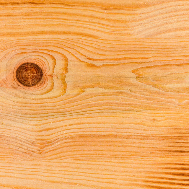 """Natural Pine Wood Texture"" stock image"