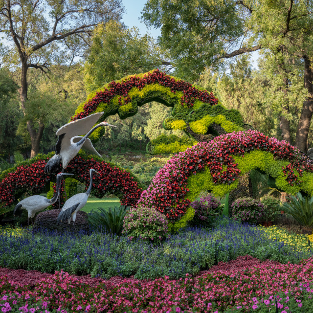 """Floral display at Summer Palace outside Beijing, China"" stock image"