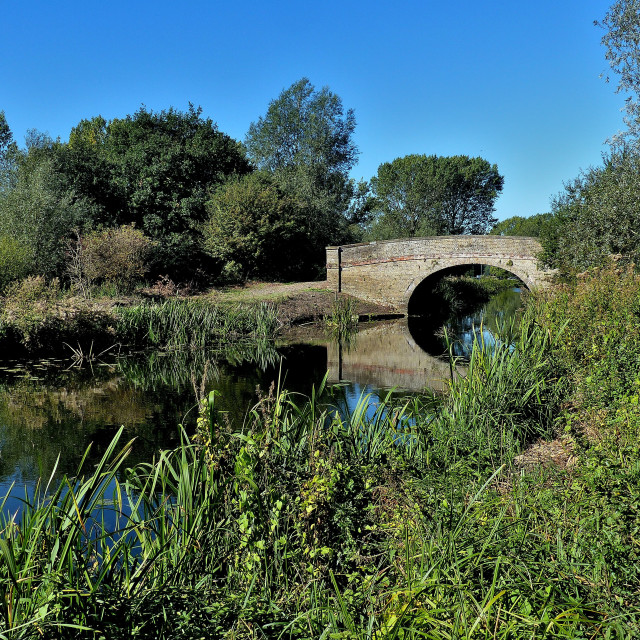 """""""Chelmer Canal Essex"""" stock image"""