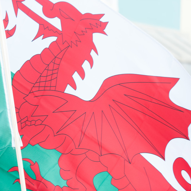 """Welsh Flag"" stock image"