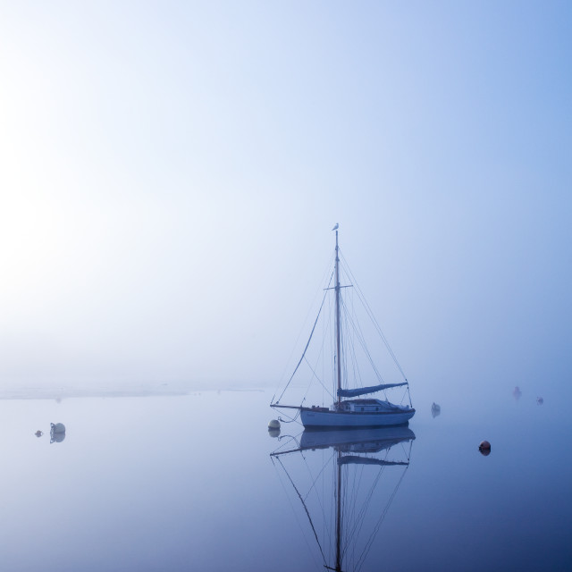 """""""Blue morning on the river"""" stock image"""