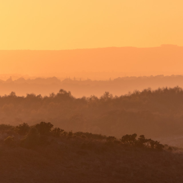 """Ashdown Forest Layers"" stock image"